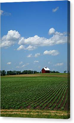 Red Barn And Cornfield Canvas Print by Frank Romeo