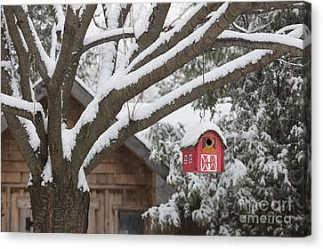 Red Barn Birdhouse On Tree In Winter Canvas Print by Elena Elisseeva