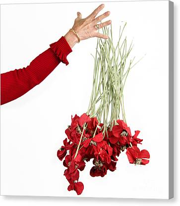Red Bouquet Canvas Print by Bernard Jaubert