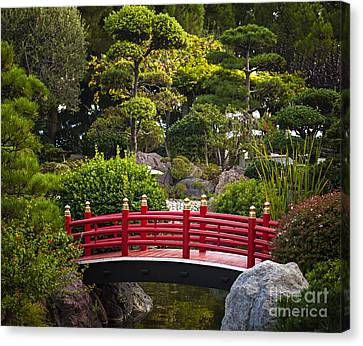 Red Bridge In Japanese Garden Canvas Print by Elena Elisseeva