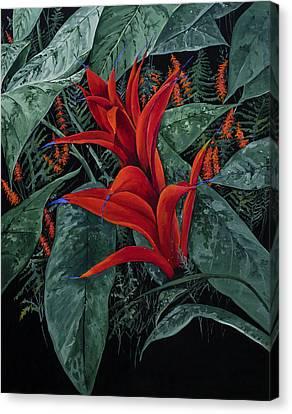 Red Bromeliad Canvas Print by Virginia McLaren