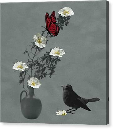 Red Butterfly In The Eyes Of The Blackbird Canvas Print by Barbara St Jean