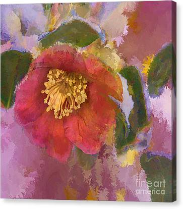 Red Camelia In A Winter Coat Canvas Print by Terry Rowe