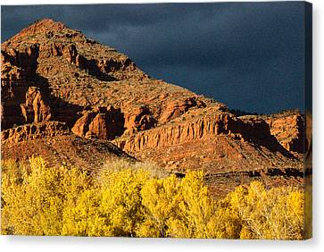 Red Cliffs National Recreation Area Fall Colors Leeds Utah Canvas Print by Robert Ford