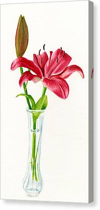 Red Lily In A Vase Canvas Print by Sharon Freeman