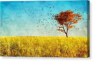 Red Maple Canvas Print by Bob Orsillo