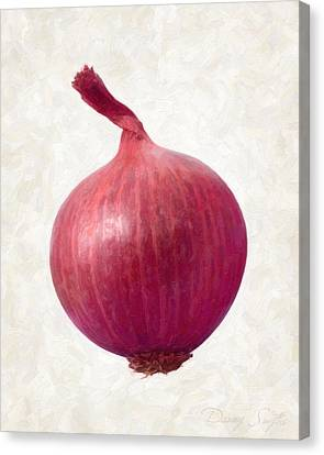 Red Onion  Canvas Print by Danny Smythe