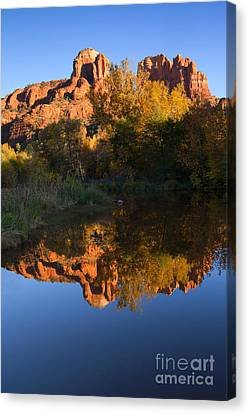 Red Rock Reflections Canvas Print by Mike  Dawson