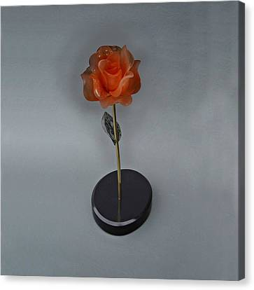 Red Rose Canvas Print by Leslie Dycke