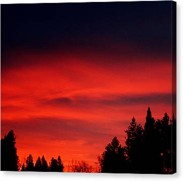 Red Sky In  The Bitterroot  Canvas Print by Larry Stolle