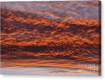 Red Sky Canvas Print by Michal Boubin