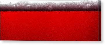 Red Sparkling Wine Canvas Print by Steve Gadomski