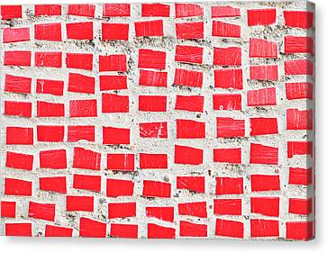 Red Tiles Canvas Print by Tom Gowanlock