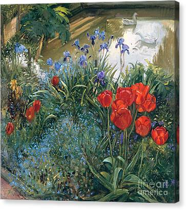 Red Tulips And Geese  Canvas Print by Timothy Easton