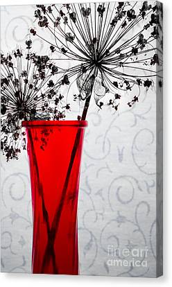 Red Vase With Dried Flowers Canvas Print by Michael Arend