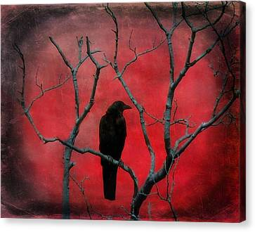 Red Velvet Canvas Print by Gothicolors Donna Snyder