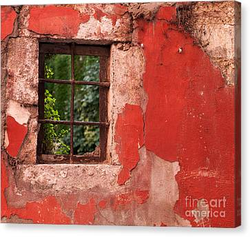 Red Wall Canvas Print by Rick Piper Photography
