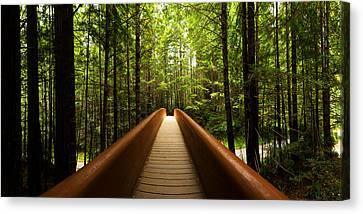 Redwood Bridge Canvas Print by Chad Dutson