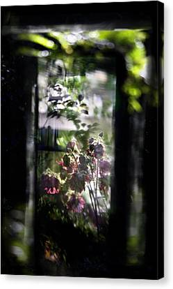 Reflect  Canvas Print by Richard Piper