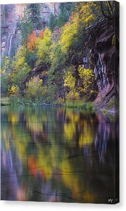 Reflected Fall Canvas Print by Peter Coskun