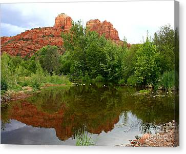 Reflection Of Cathedral Rock Canvas Print by Carol Groenen