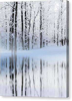 Reflection On A Dream Collingwood, On Canvas Print by Andrea Kollo