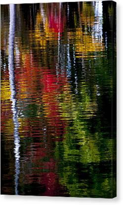 Reflections Canvas Print by David Cote