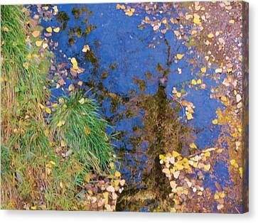 Reflections Of Fall Canvas Print by Feva  Fotos