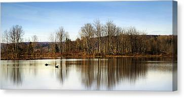 Reflections On Golden Pond Canvas Print by Christina Rollo