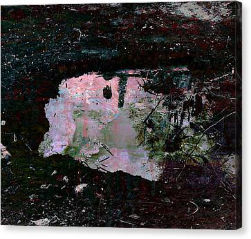 Reflective Skylight On A Small Pond Of Water # 1 Canvas Print by Miguel Conesa Osuna