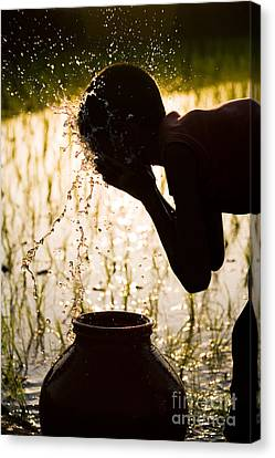 Refreshing Water Canvas Print by Tim Gainey