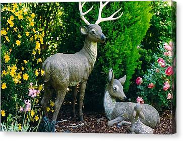 Replica Of Deer Family Canvas Print by Robert Bray