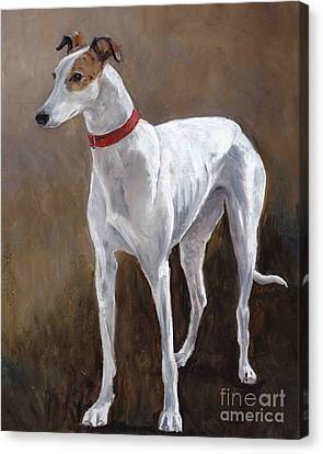 Rescued Racer Canvas Print by Charlotte Yealey