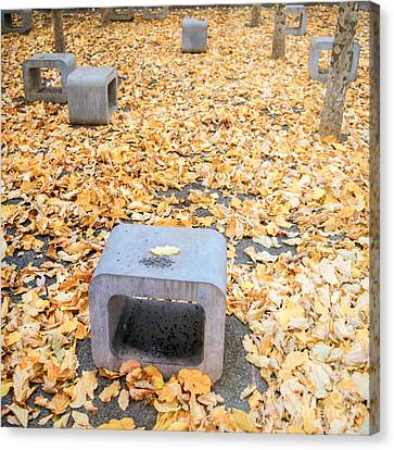 rest in fall IV Canvas Print by Hannes Cmarits