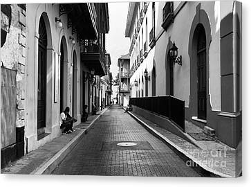 Resting In Casco Viejo Mono Canvas Print by John Rizzuto