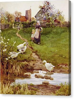 Returning Home Canvas Print by Thomas James Lloyd