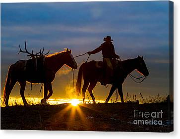 Returning Home Canvas Print by Inge Johnsson
