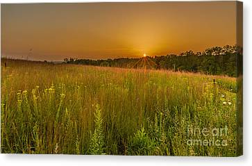 Retzer Sunset Canvas Print by Andrew Slater