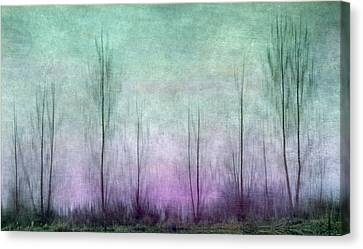 Reverse Reflection Canvas Print by Angie Vogel