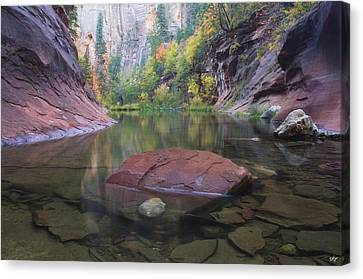 Revisited Canvas Print by Peter Coskun