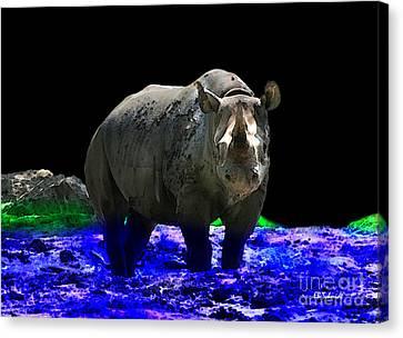 Rhino Canvas Print by E B Schmidt
