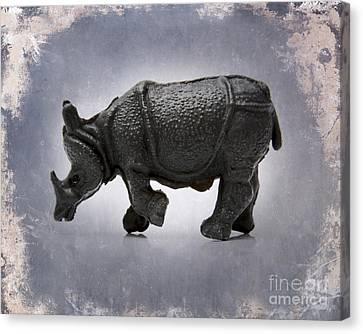 Rhinoceros Canvas Print by Bernard Jaubert
