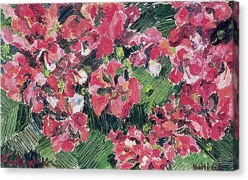 Rhododendron Canvas Print by Izabella Godlewska de Aranda