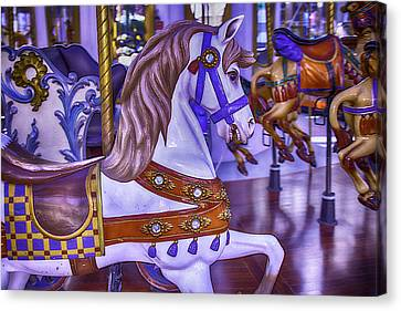 Ride The White Horse Canvas Print by Garry Gay