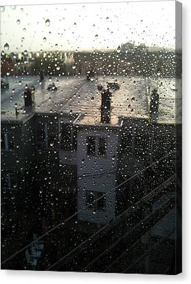 Ridgewood Houses Wet With Rain Canvas Print by Mieczyslaw Rudek Mietko