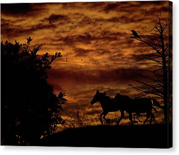Riding Into The Night Canvas Print by Diane Schuster