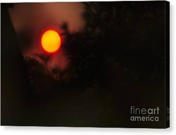 Ring Of Fire - Eerie Bushfire Sunset Canvas Print by Kaye Menner