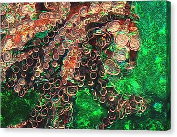 Rings Canvas Print by Jack Zulli