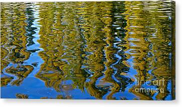Ripples Canvas Print by Alex Cassels