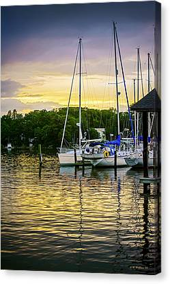 Ripples At Sunset Canvas Print by Brian Wallace